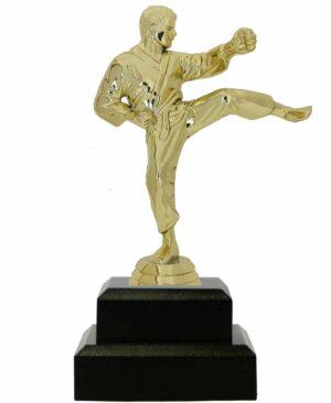 Karate Male Trophy 200mm