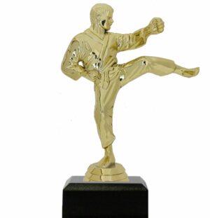 Karate Male Trophy 175mm
