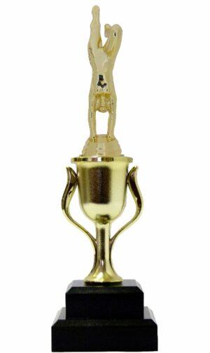 Gymnastics Female Trophy 295mm