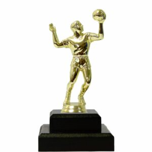 Volley Ball Trophies